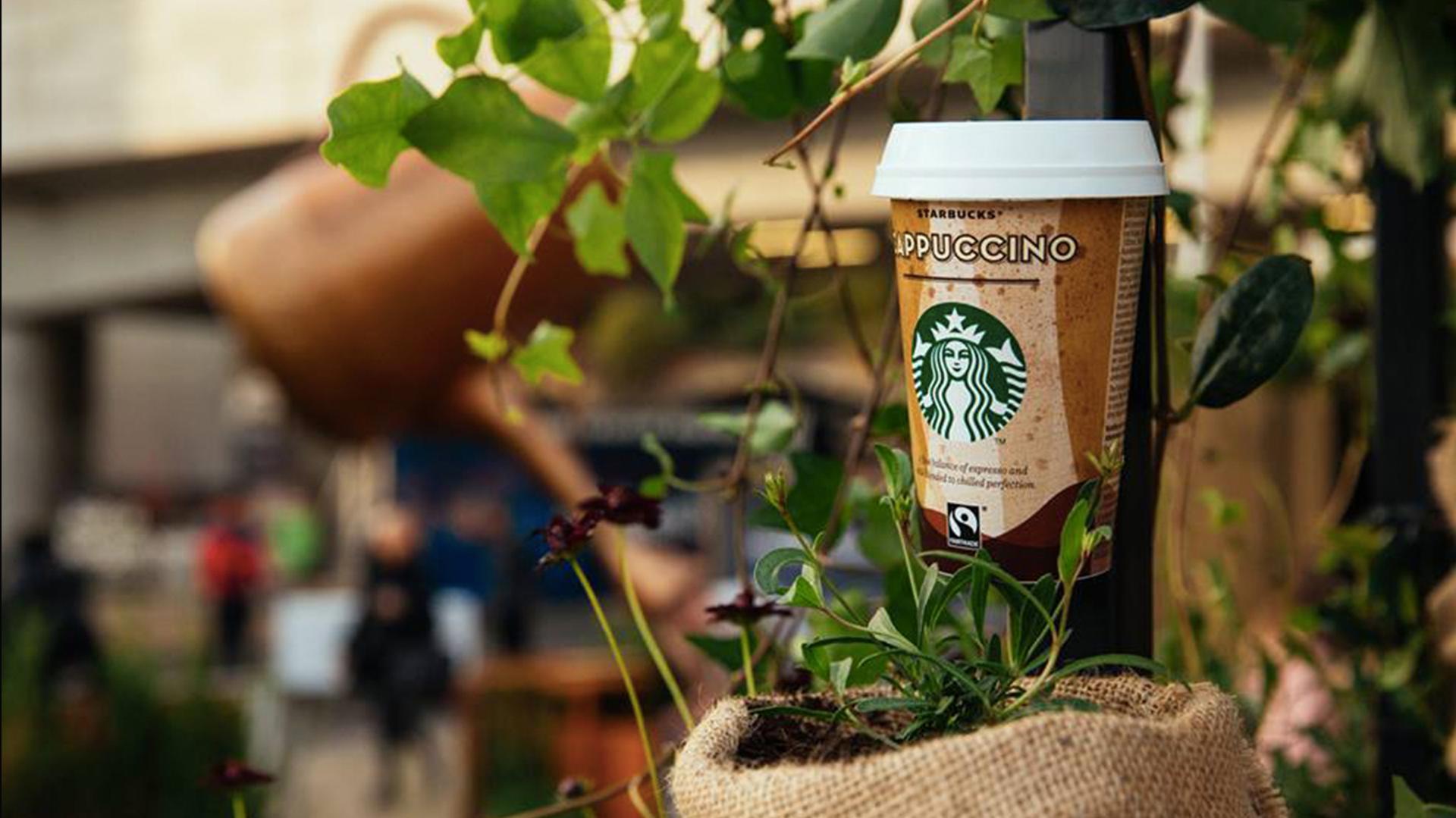 Starbucks Garden 1