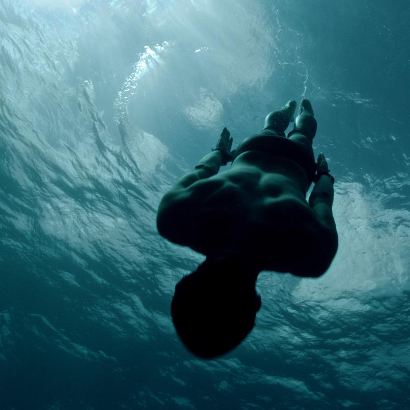 Glenfiddich Diver