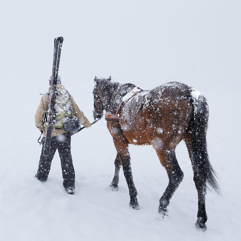 Canon Skijoring Stills